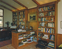 library-wood-book-shelves