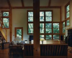living-room-tree-top-view